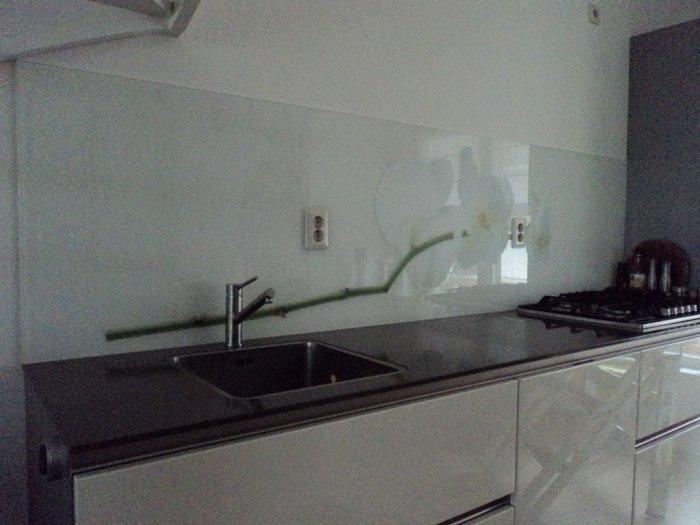 Rvs achterwand keuken gamma u2013 informatie over de keuken